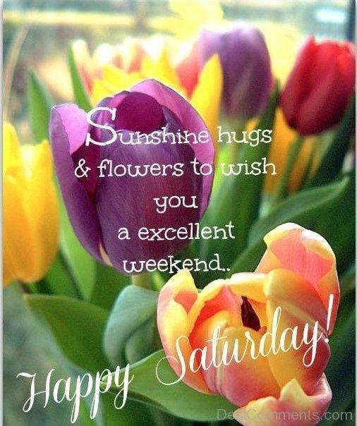 Excellent Weekend – Happy Saturday