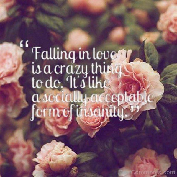 Falling In Love Is A Crazy Thing To Do - DC458