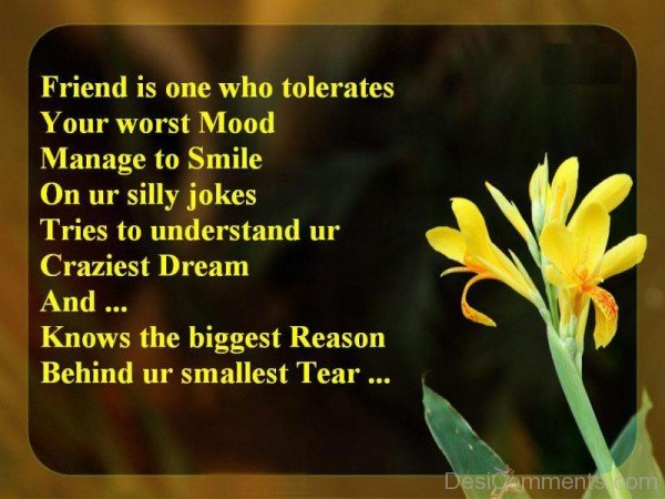 Friend Is One Who Tolerates Your Worst Mood