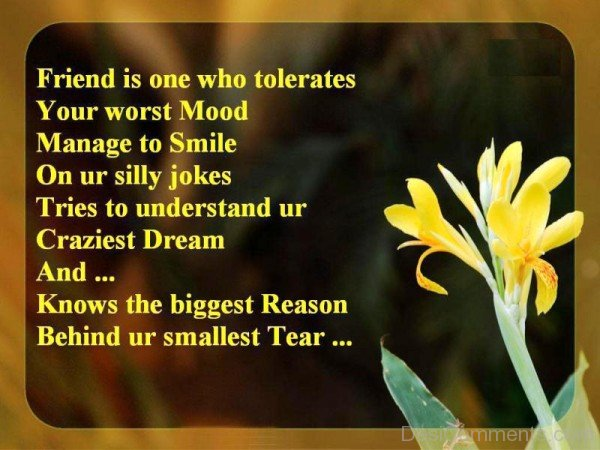 Friend Is One Who Tolerates Your Worst Mood -dc099057