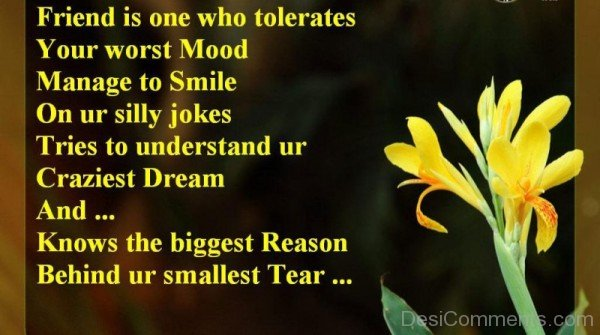 Friend is one who tolerates-DC038