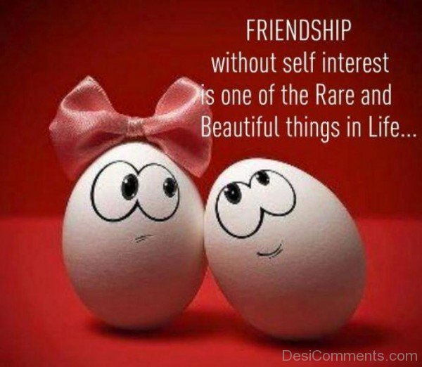 Friendship Without Self Interest Is One Of The Rare