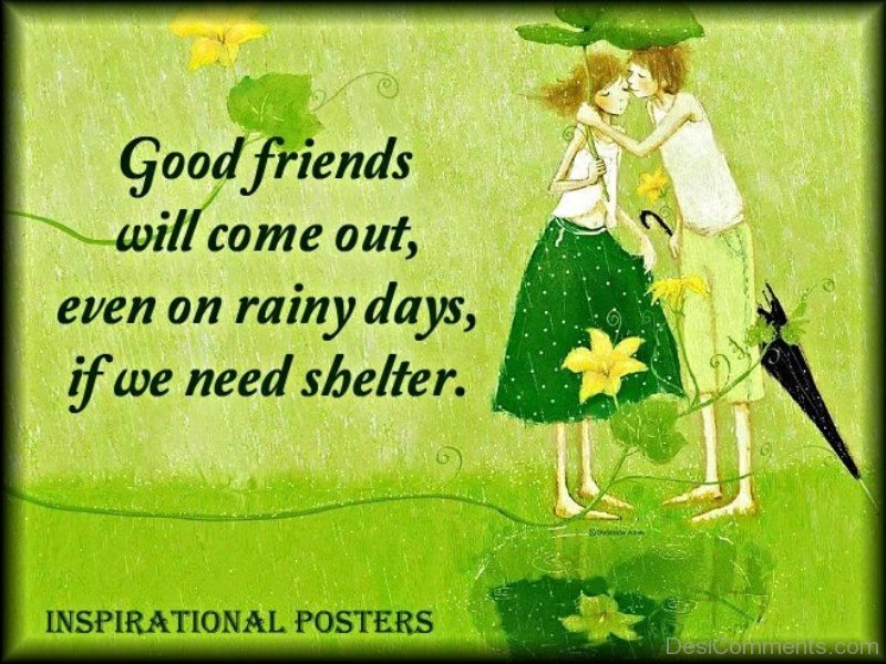 Good Friends Will Come Out Even On Rainy Days If We Need Shelter DC070