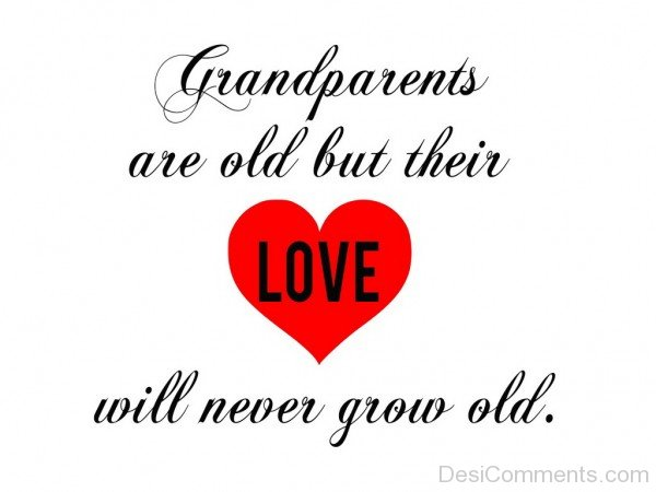 GrandParents Are Old But Their Love Will Never Grow Old