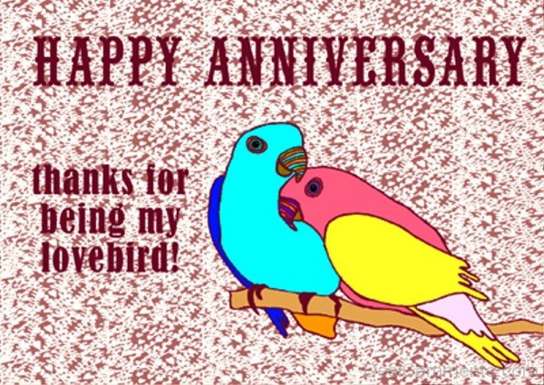 Happy Anniversary Thanks For Being My Lovebird