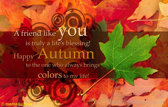 Happy Autumn !
