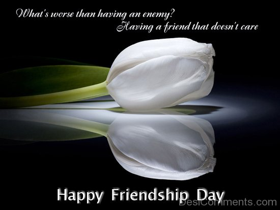 Happy Friendship Day To A Sweet Friend