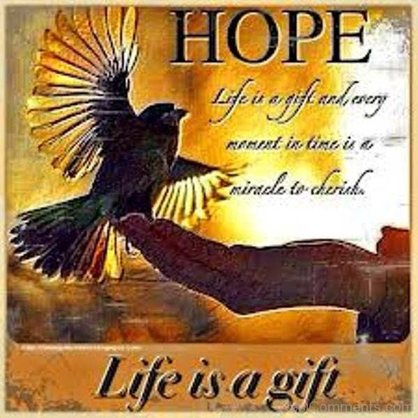 Picture: Hope Is a Gift For Life
