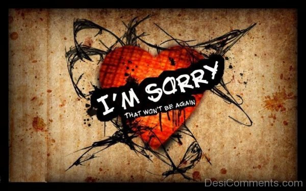 I Am Sorry That Won't Be Again