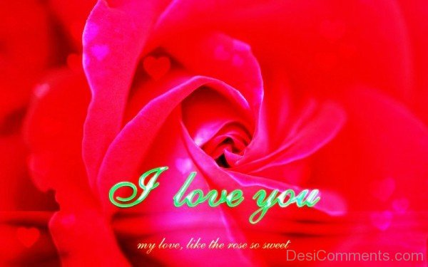 I Love You My Love,Like The Rose So Sweet-YTE313DC10