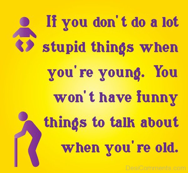 Stupid Funny Quotes And Sayings: If You Do Not Do A Lot Stupid Things
