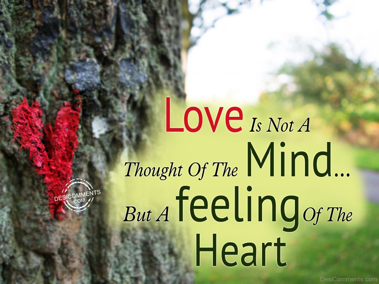 Love Is Not A Thought Of The Mind Desicomments Com