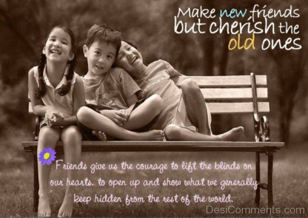 Make new friends but cherish the old ones-DC068