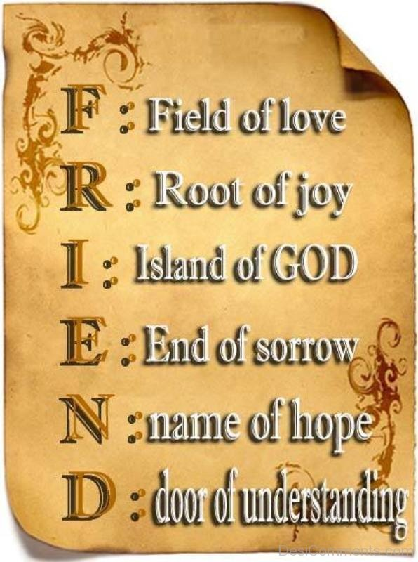 Meaning Of Friend Quotes-DC079