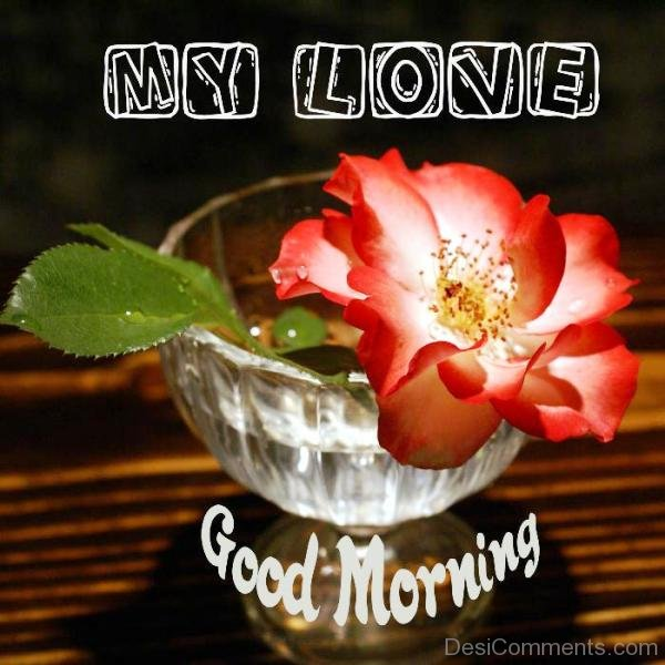 Good Morning My Love Comments : My love good morning desicomments