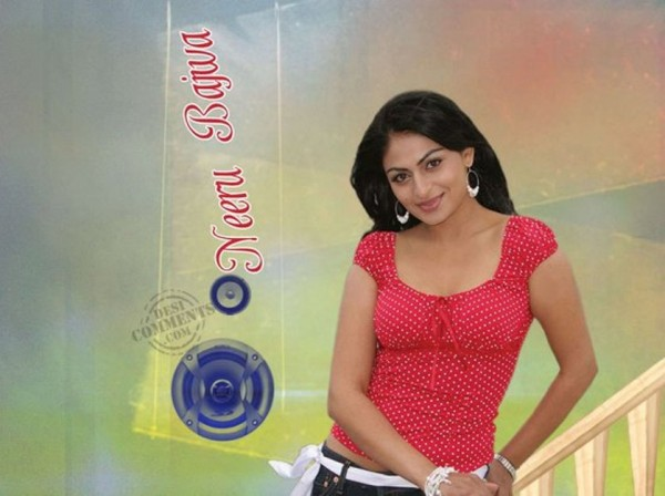 Neeru Bajwa Lovely Looks