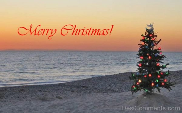 Nice Merry Christmas Tree Picture-DC71