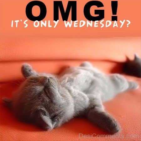 Omg Its Only Wednesday - DesiComments.com