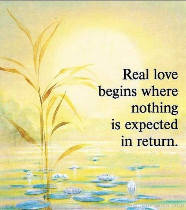 Real Love Begins Where Nothing Is Expected In Return-dc410