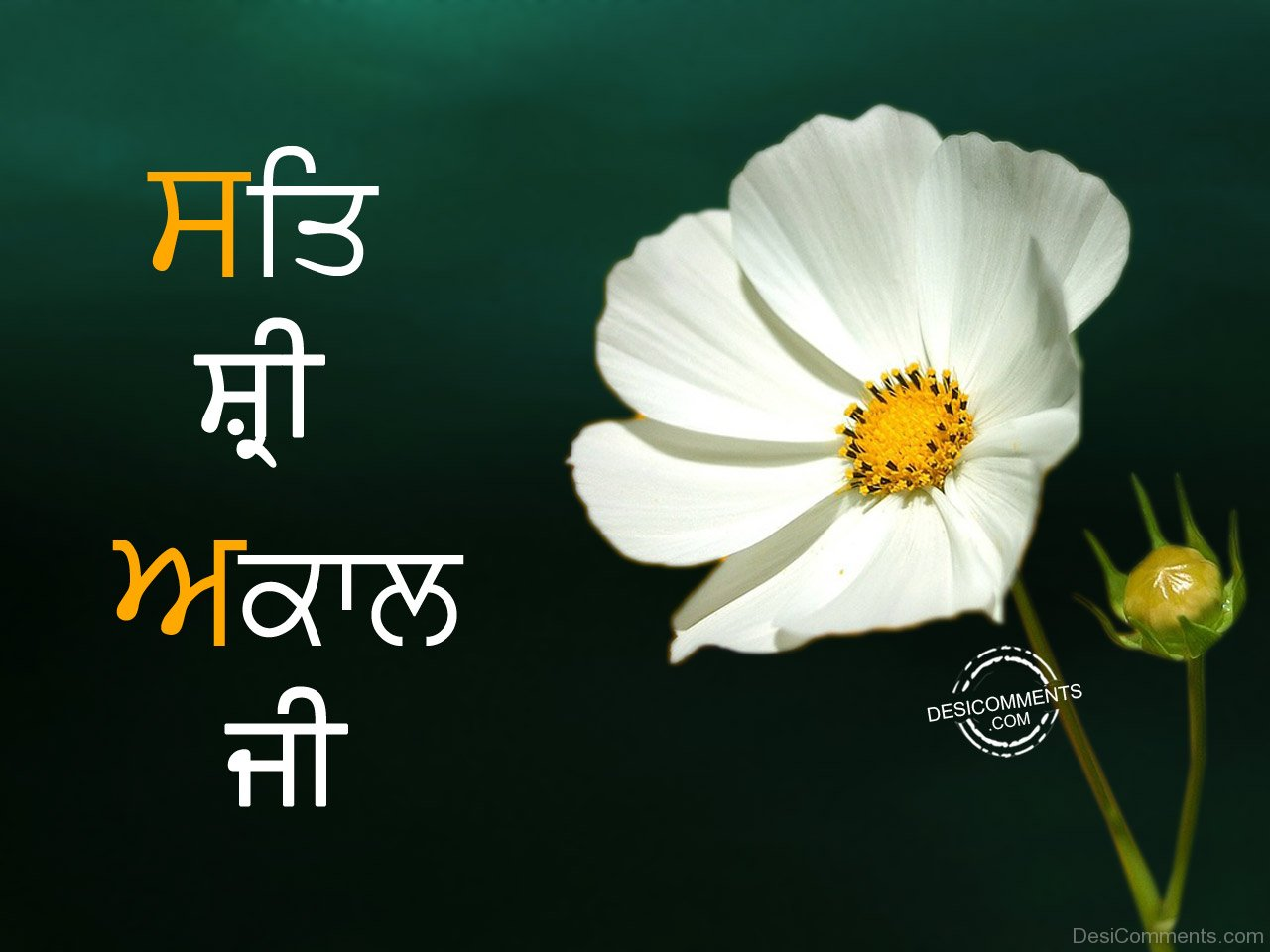 Sat sri akal with very beautiful flower desicomments sat sri akal with very beautiful flower izmirmasajfo