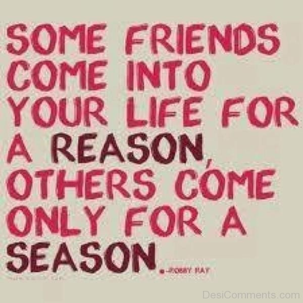 Some Friends Come Into Your Life For A Reason