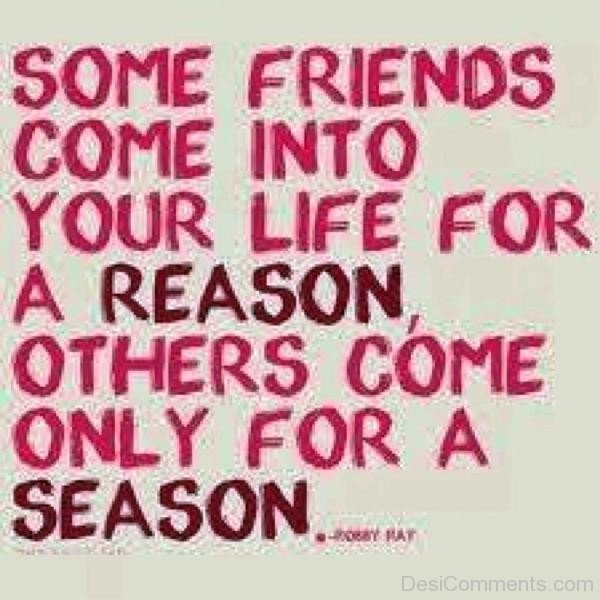 Some Friends Come Into Your Life For A Reason-dc099127