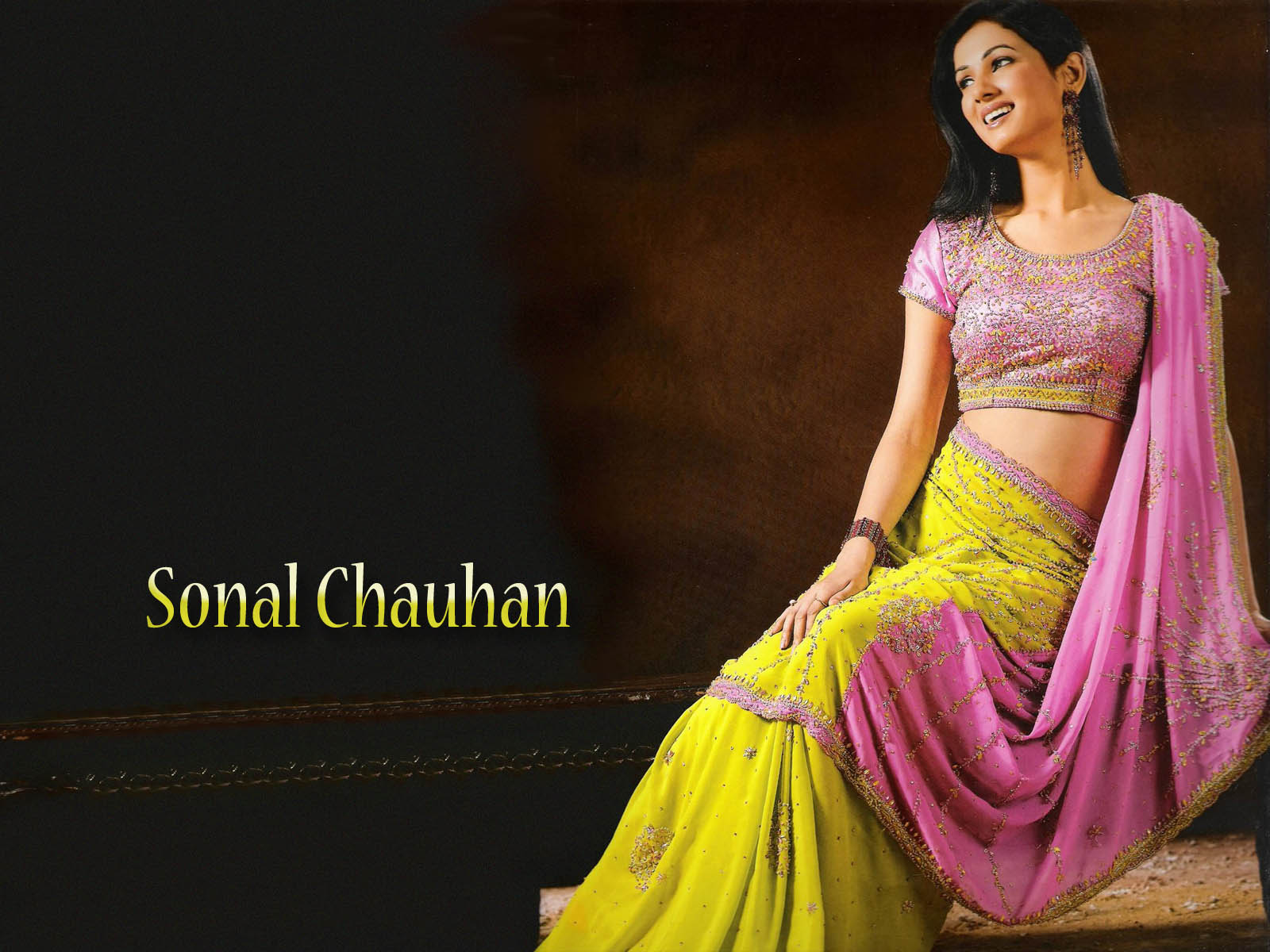 Sonal Chauhan Looking Nice In Saree Desicommentscom