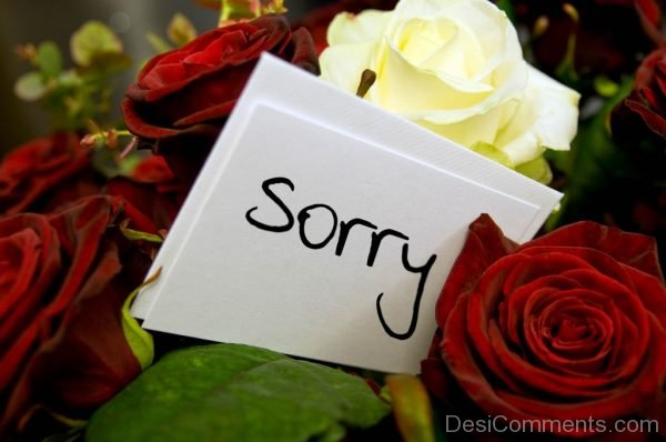 Sorry Flower Image.-Dc39