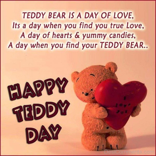 Teddy Bear Is A Day Of Love-hnu316DESI07