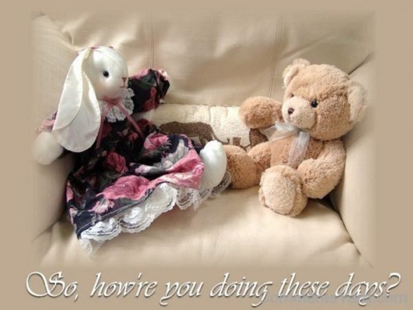 Teddy Bear Sayings How're You Doing These Days