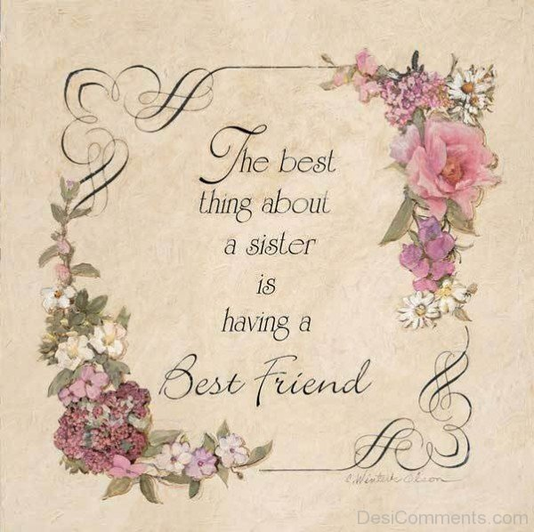 The best thing about a sister is having a best friend-DC084