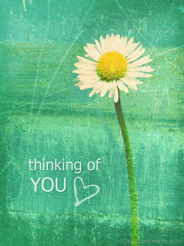 Thinking of You Love