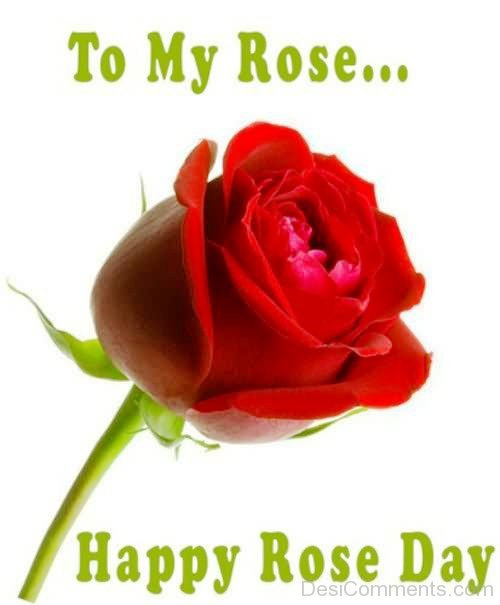 To My Rose Happy Rose Day-lik723DESI05
