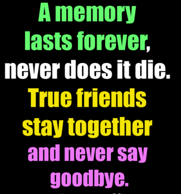 True Friends Stay Together And Never Say Goodbye -DC112