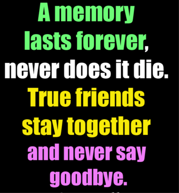 True Friends Stay Together And Never Say Goodbye -dc099170