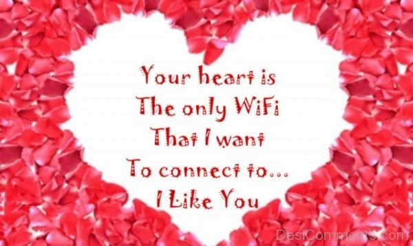 Want To Connect Your Heart I Like You-DC1DC29