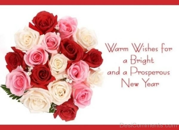 Warm Wishes For A Bright And A Prosperous New Year-DC89