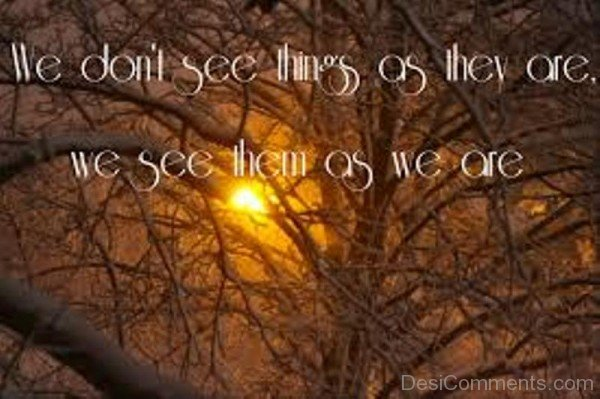 Picture: We Do Not See Things As They Are We See Them As We Are
