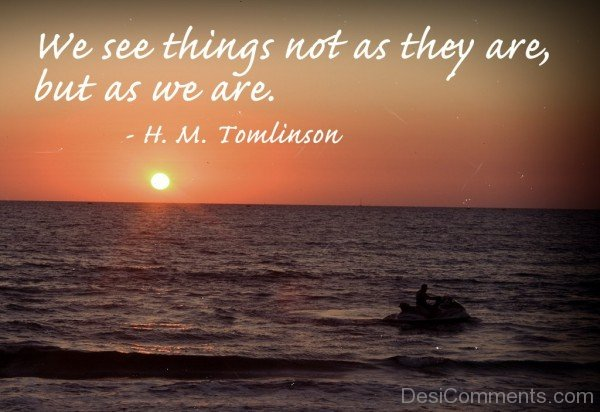 We See Things-DC987DC243