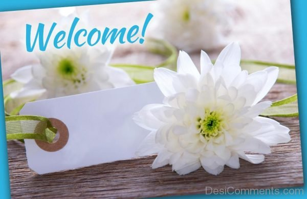 Welcome White Flowers
