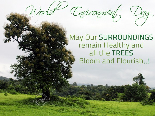 World Environment Day – Save Tree