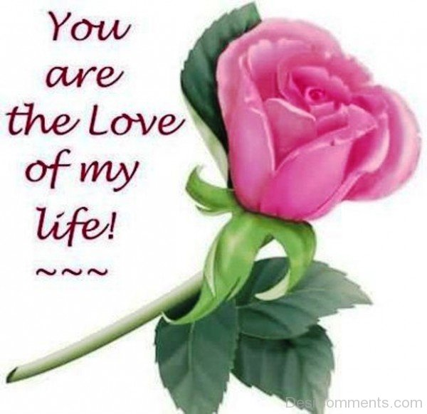 You Are The Love Of My Life-YTE336DC13