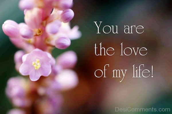 You Are The Love Of My Life-pyb624DC10