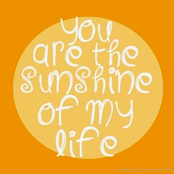 You Are The Sunshine Of My Life-pyb627DC03