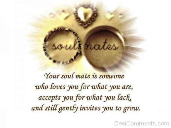 Your Soulmate Is Someone Who Loves-yni854DC13