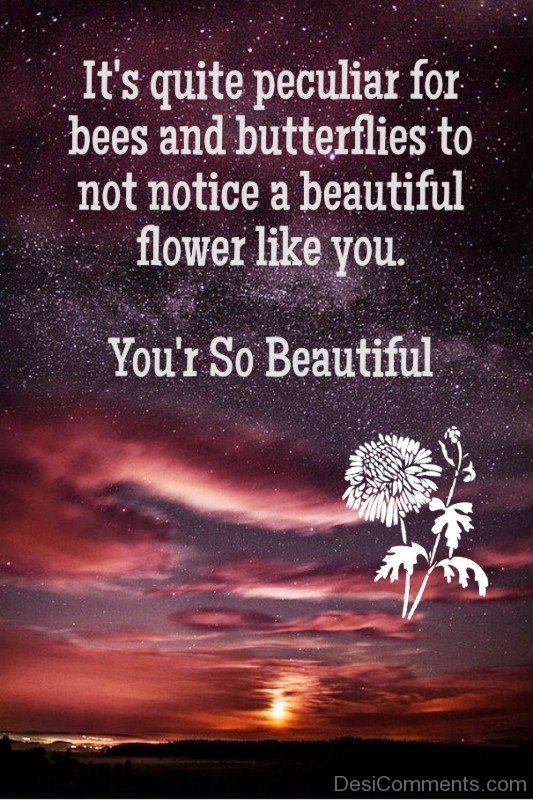 You're So Beautiful Image-ybe2111DC108